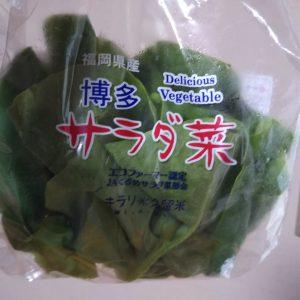 サラダ菜が1円・・・