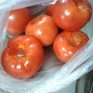 熟れすぎたトマトがあったら・・・